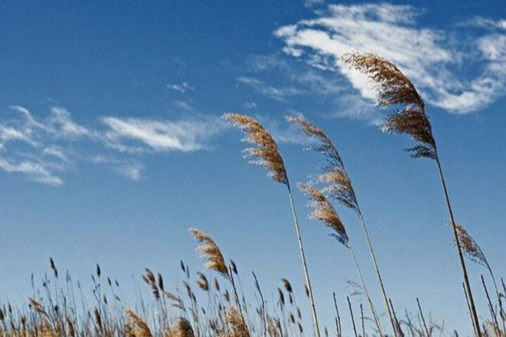 تدوام افزایش دما و وزش باد در آذربایجانغربی