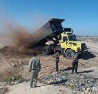معدومسازی ۱۰۰ تن گندم کپکزده در دشت آزادگان