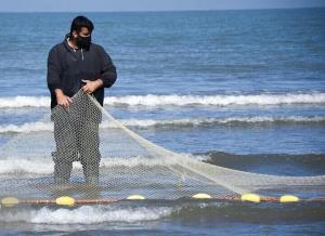 کرونا صادرات آبزیان از آذربایجانغربی را کاهش داد