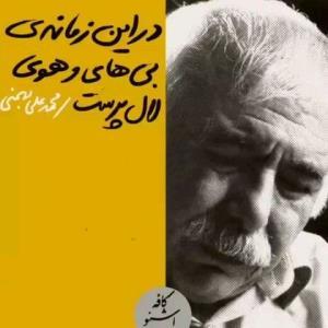 شعر خوانی زیبایی از محمدعلی بهمنی