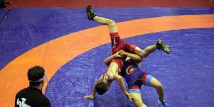 محمدیان با کسب سهمیه المپیک به مدال طلا رسید
