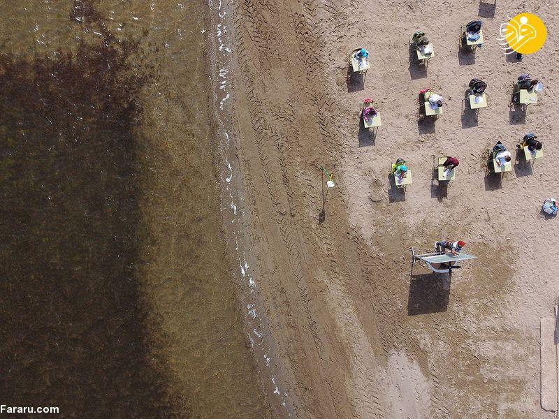 برپایی کلاس درس در ساحل دریا