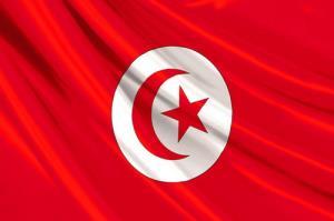 درگیری شدید بین 2 زن تونسی در هواپیما
