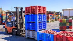 صادرات محصولات کشاورزی از ٦ میلیارد دلار گذشت