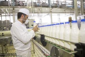 تولید شیر در قزوین از ۶۰۰ هزار تن فراتر رفت