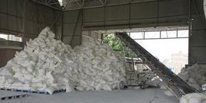 افزایش سرانه آرد در سیستانوبلوچستان