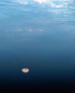 تبریک آغاز ماه رمضان توسط آژانس فضایی اروپا