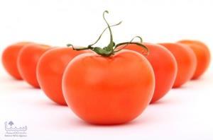 موفق ترین نمونه میوه های تراریخته را بشناسید