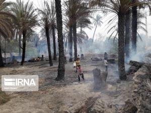 خسارت ۵۱ میلیاردی آتشسوزی به کشاورزان سیاهو