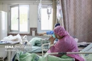 آمار ابتلا به کرونا در استان بوشهر از ۳۰ هزار نفر گذشت