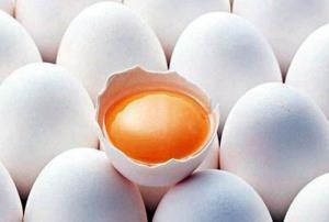 دانستنی هایی درباره زرده تخم مرغ