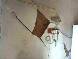 فرماندار گناوه: تمهیدهای لازم برای اسکان اضطراری زلزلهزدگان گناوه در شب اندیشیده شد