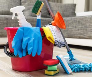 روش های عالی برای پاکسازی خانه از شپش