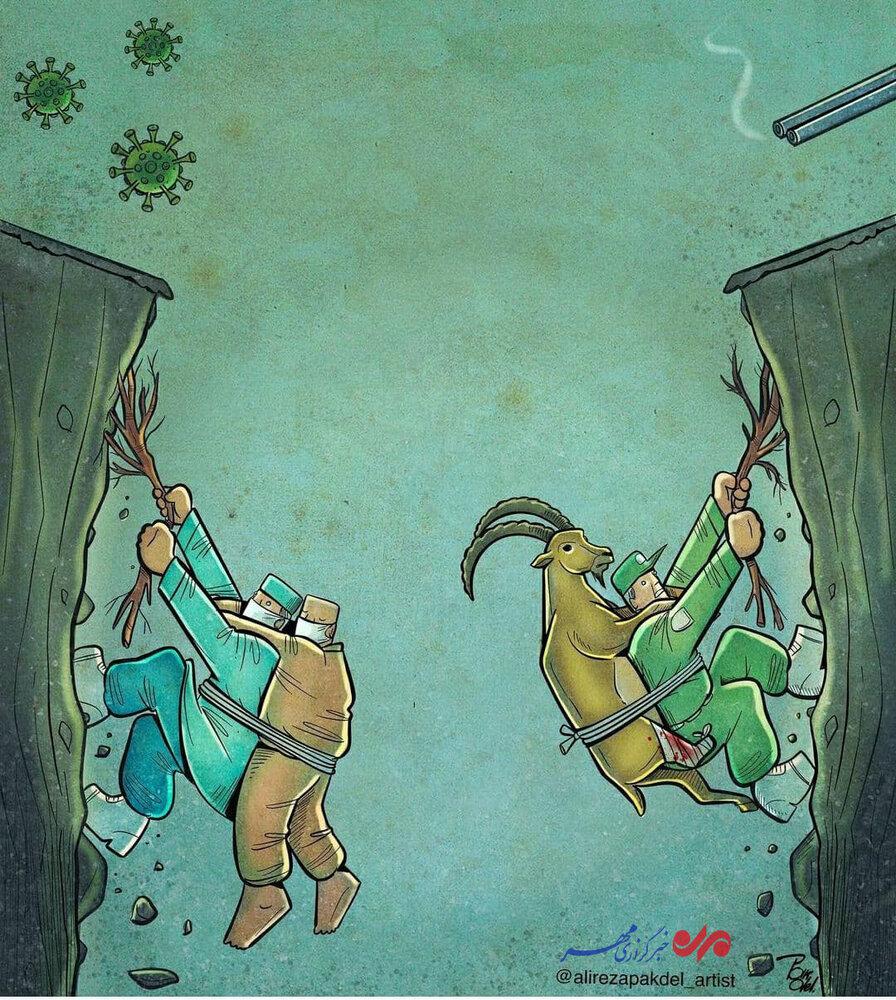 کارتون/ محیط بانان و کادر درمان از جان خود میگذرند تا زندگی ببخشند