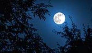 شاعرانه/ ماه بیفتد به زیر گر تو برآیی به بام