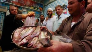 فسیخ، غذای کشنده ولی محبوب در مصر!