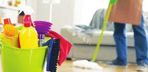 نظافت خانه به جلوگیری از زوال عقل کمک میکند