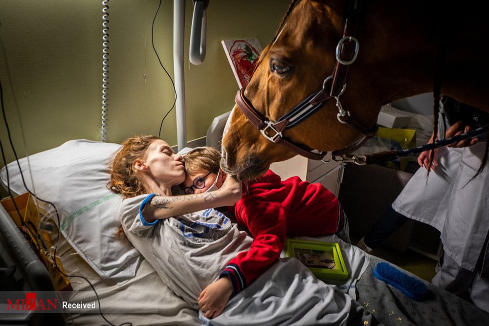 تصاویر جالب برندگان جایزه بین المللی عکس خبری جهان