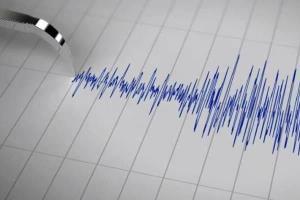 تعداد زمینلرزههای گناوه سه رقمی شد