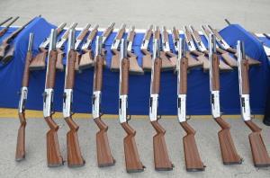 ۳۰ قبضه اسلحه شکاری قاچاق در روانسر کشف شد