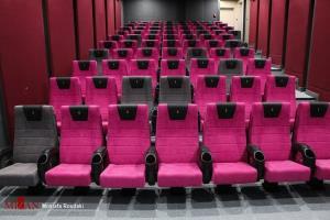 سخنگوی شورای صنفی نمایش تکلیف سینماها را روشن کرد