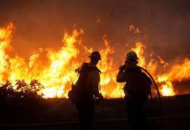 آتشسوزی در محل دپوی ضایعات درختان پارک آهنشهر بافق