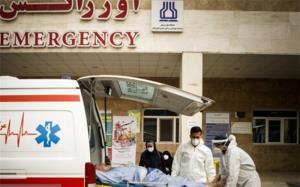 افزایش ٧ برابری تماس با اورژانس نسبت به هفته گذشته