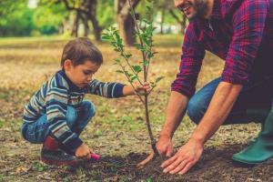 4 پیشنهاد برای علاقهمند کردن کودکان به زمین پاک