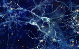 چگونه سلولهای مغز دیانای خود را ترمیم میکنند؟