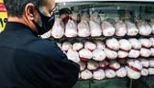 ثبات قیمت مرغ در بازار؛ افزایش جوجهریزی نسبت به سال قبل