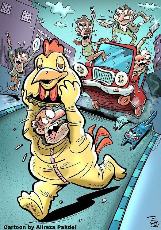 کاریکاتور/ گرانی مرغ کار دست مردم داد!