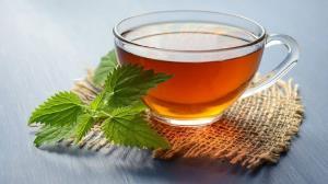 نعنا، گیاهی مفید برای تسکین مشکلات گوارشی