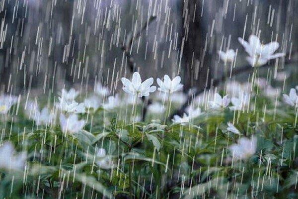 ادامه بارشها در هرمزگان