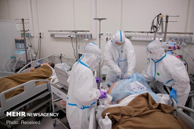 ۲۴۱ بیمار مبتلا به کرونا در بیمارستانهای ایلام بستری هستند