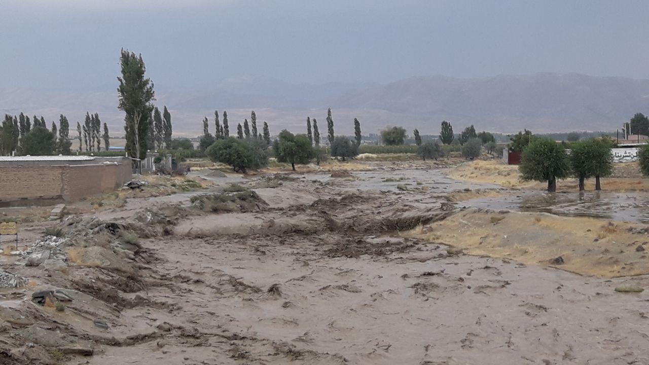 بارش تگرگ به ۱۰۰۰ هکتار از مزارع و باغات خوی خسارت زد