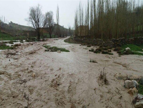 سیل ۹۵ میلیارد ریال به کشاورزان جغتای در خراسان رضوی خسارت زد