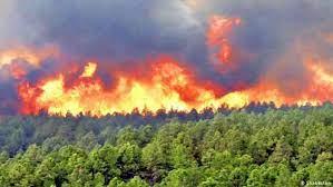 مهار کامل آتشسوزی ارتفاعات صعبالعبور کوه گُرم جهرم
