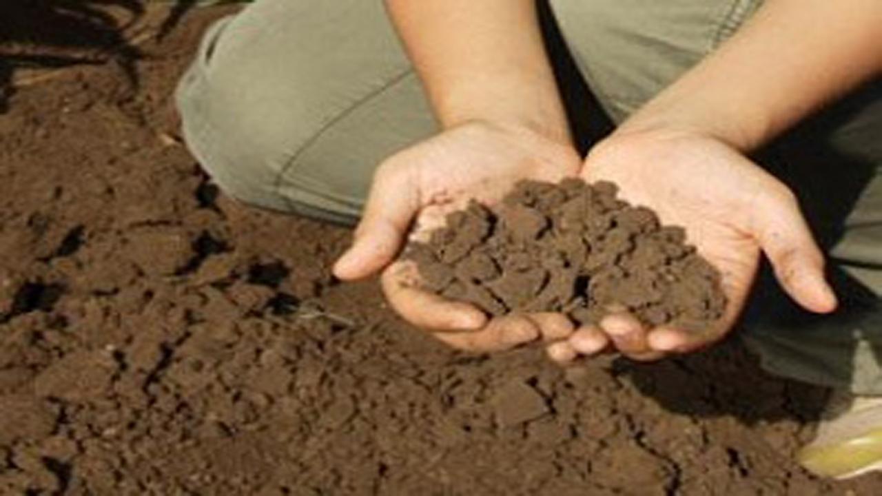 شناسایی محموله خاک قاچاق در عرصههای منابع طبیعی بیضا