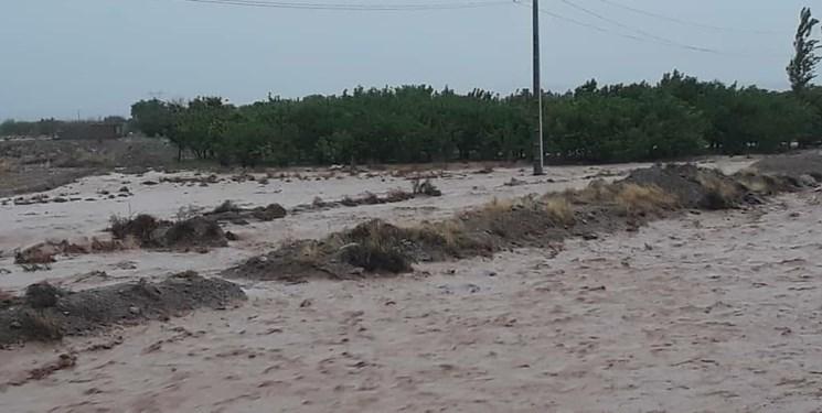انسداد برخی راههای روستایی در میامی؛ آمادهباش دستگاههای امدادی استان سمنان