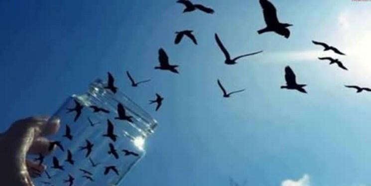 آزادی ۱۲ زندانی جرائم غیر عمد در سیستانوبلوچستان