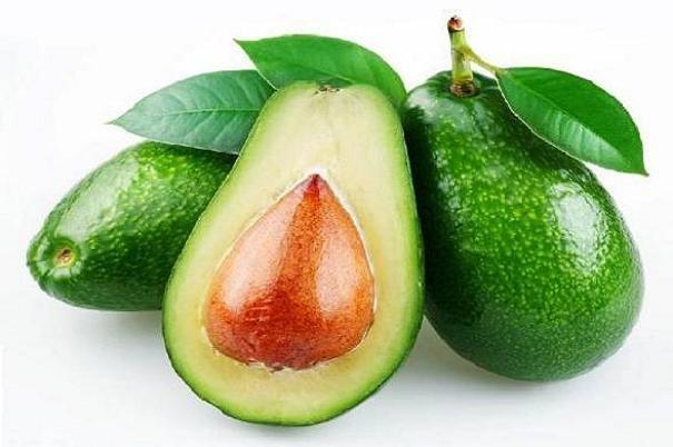 ترکیب موجود در آووکادو به درمان لوسمی کمک میکند