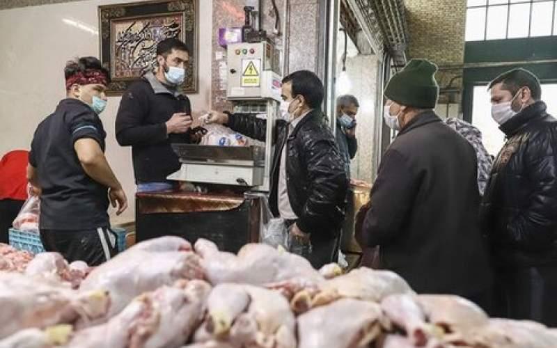 عاقبت بازار مرغ در ماههای آینده چه میشود؟