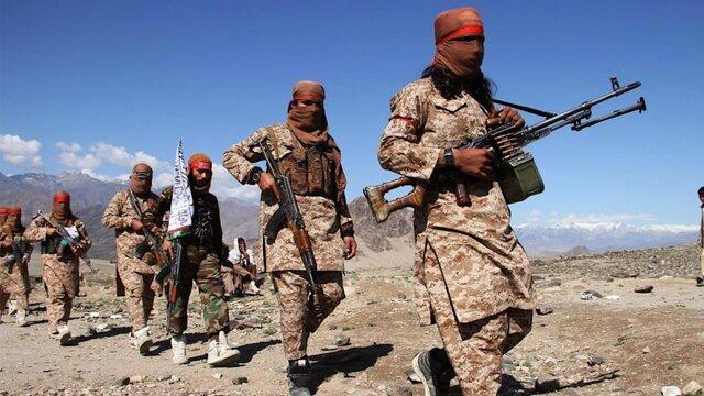 دیلیبیست: طالبان آماده است تا «عزیز» القاعده باشد