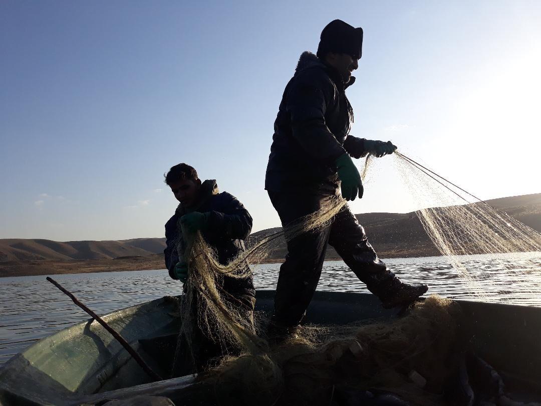 صید ماهی در دریاچه سد زاینده رود ممنوع شد