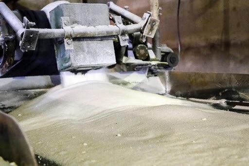 آخرین وضعیت تولید شکر در کشور