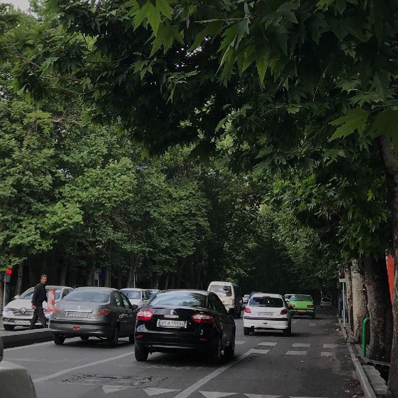 منظره زیبای یکی از خیابان های تهران