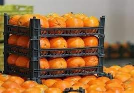 نقش سامانه تعطیل تجارت در فاسد شدن صدها هزار تن میوه