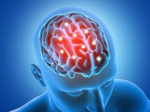 حال مغز در کدام فصل بهتر است؟