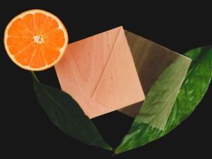 تولید چوب شفاف