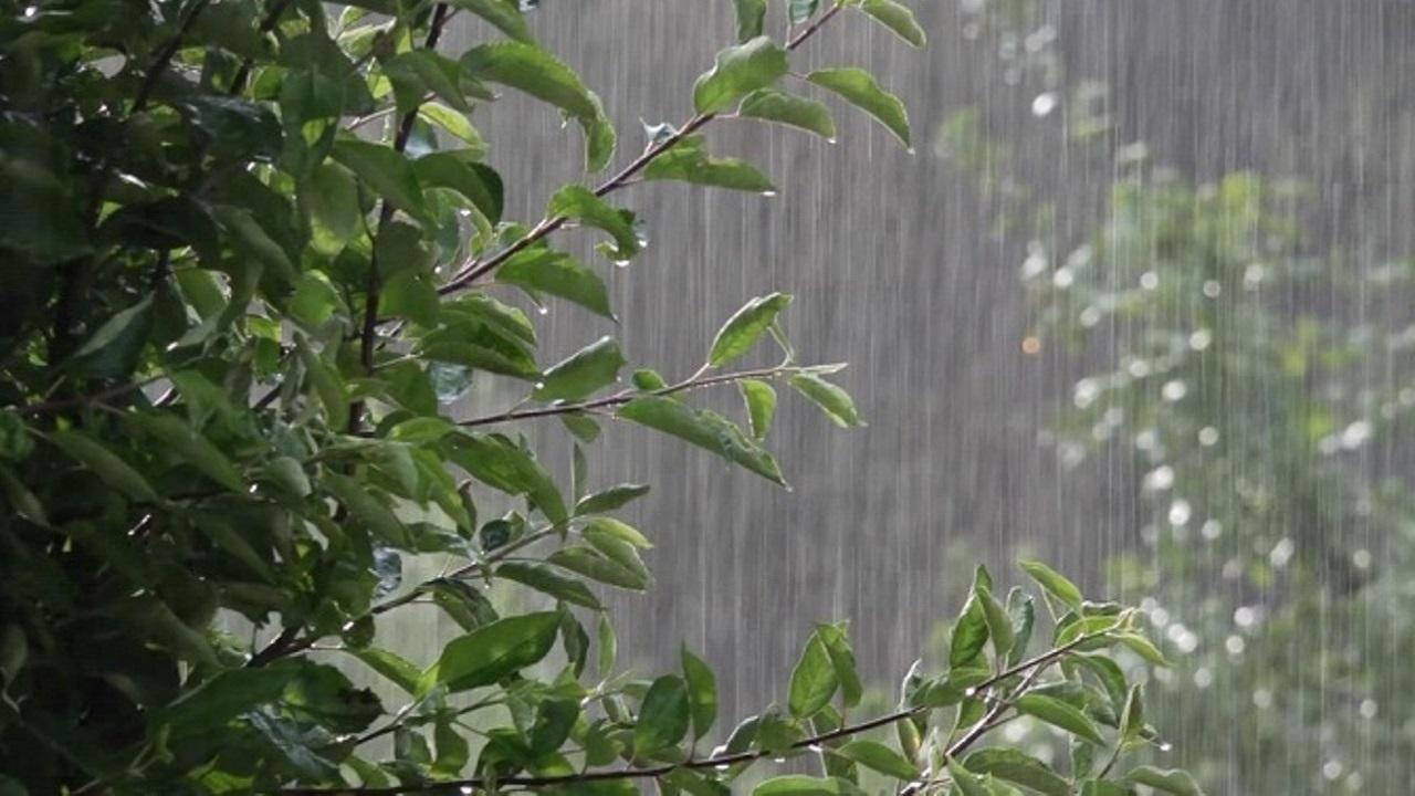 آسمان گیلان تا فردا بارانی است
